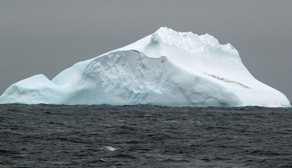 Icebergs on the move