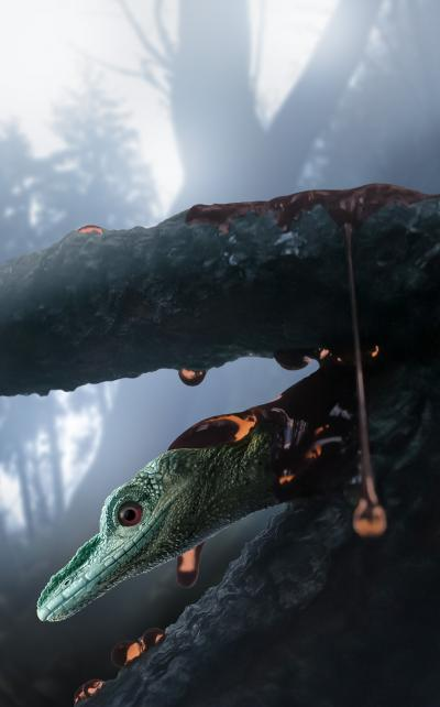 Amber Fossil Preserves Bizarre Lizard