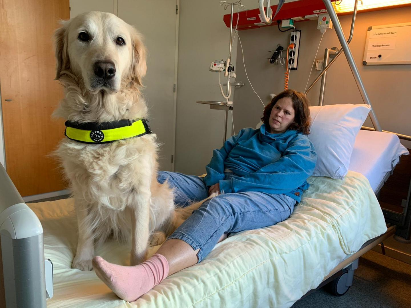 Assistance Dog User Iris and Her Dog Sandy in the Recovery Room After Surgery