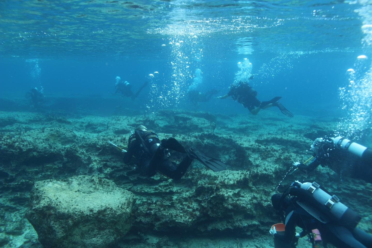 Lionfish removal event off the coast of Cyprus