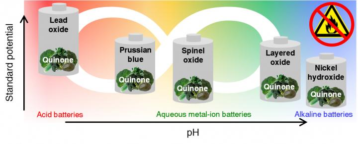 New Anode for Aqueous Batteries