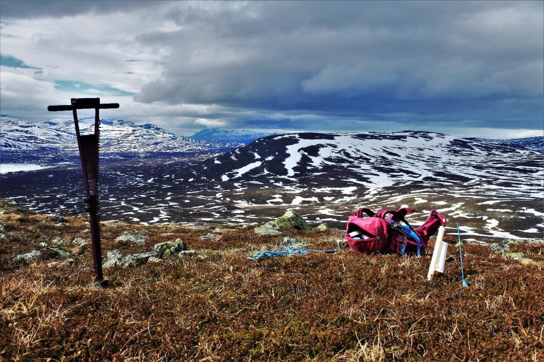 Soil Moisture Data From the Arctic Area In Kilpisjärvi, Lapland, Finland