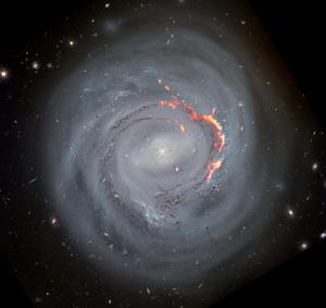 NGC 4921: A Ram Pressure Stripped Galaxy