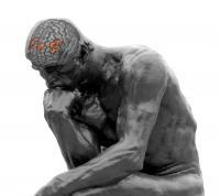 ThinkerBrain