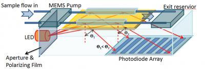Surface Plasmon Resonance System for Blood Protein Sensing