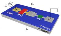 Quantum Dot Logic Circuits Provide the Long-Sought Building Blocks for Innovative Devices