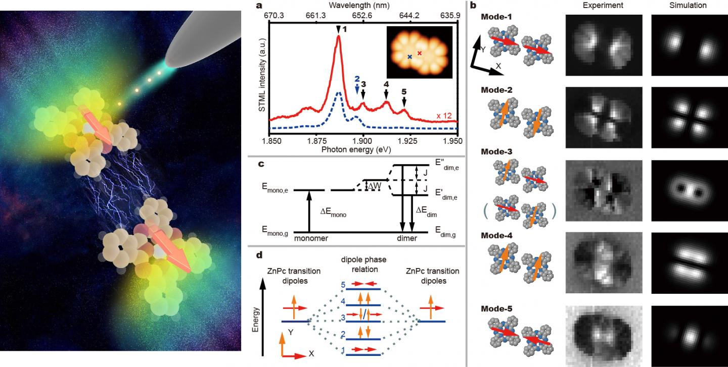 China Scientists Visualize Coherent Intermolecular Dipole-Dipole Interactions