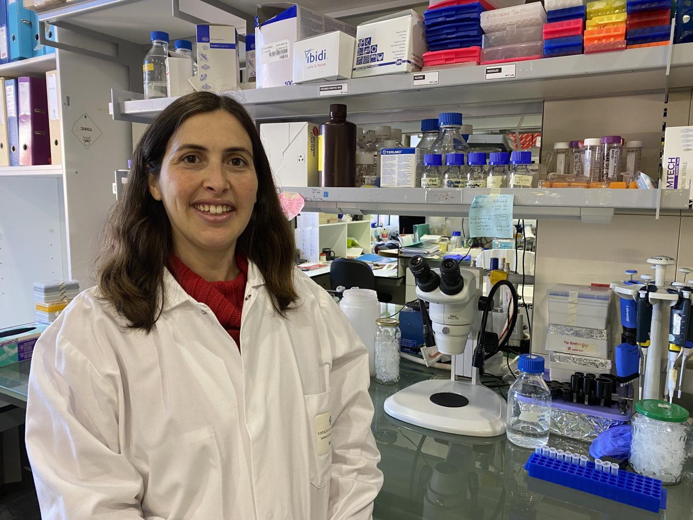 Marina Badenes, Instituto Gulbenkian de Ciencia