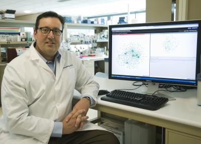 Dr. John Stamatoyannopoulos, University of Washington