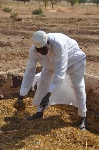 Landscape restoration approaches in Burkina Faso (3)