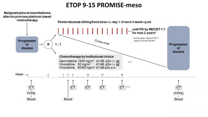 Phase III PROMISE-Meso Trial Design