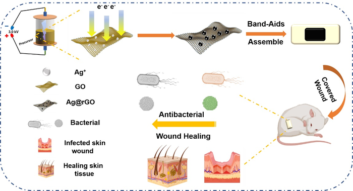 Simple and Green Way for Wound Healing: Synthesis of AgNPs@rGO