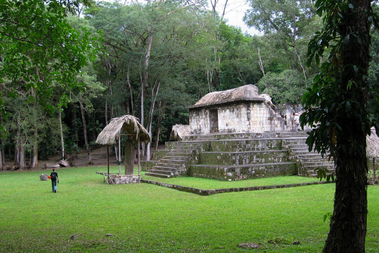 Mayan Dog Image 1