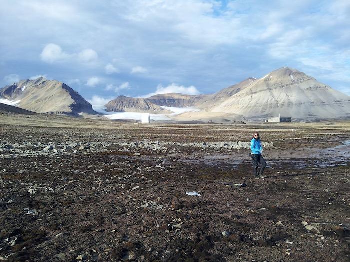Roberts in Svalbard, Norway