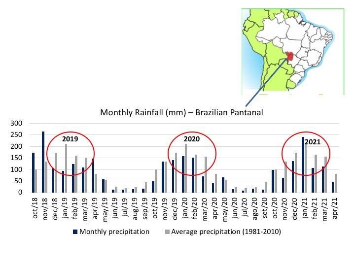Montly and average precipitation
