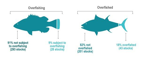 Number of Federally-Managed Fish Stocks in Overfishing, Overfished Categories