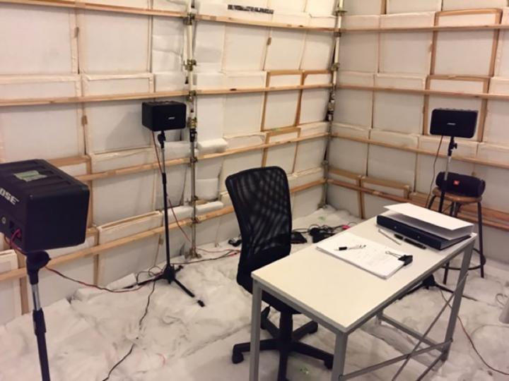 Experiment in an Anechoic Room