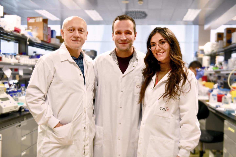 Andrés Hidalgo, Jose María Adrover, and Alejandra Aroca, CNIC