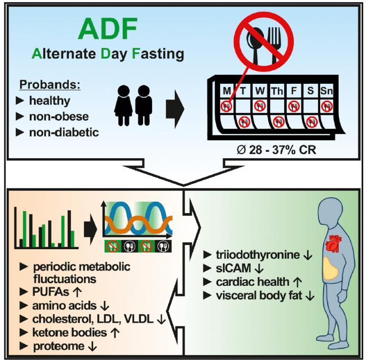 ADF Clinical Trial