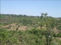 Sauri Village Cluster in Kenya