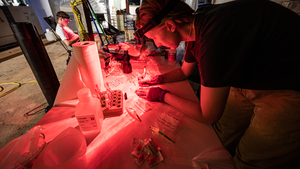 Preparing surface ocean samples using red light
