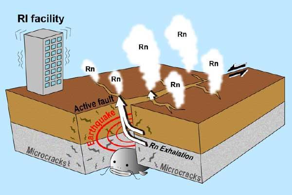 Preseismic Atmospheric Radon Anomaly Associated with 2018 Northern Osaka Earthquake