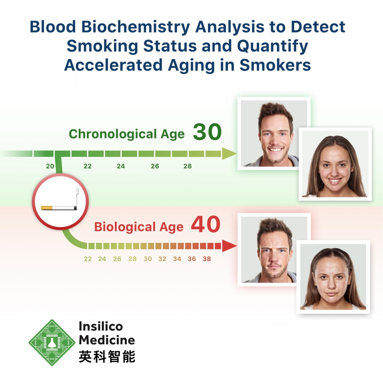 Smoking Accelerates Aging