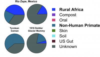 Microbiome Comparisons