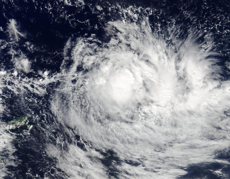 Terra Image of Ella