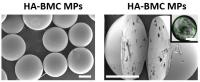 Protective Microparticles Shield and Deliver Micronutrients to People (1 of 2)