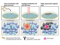 Image 2 Gold Nanorods