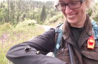 Vosnesensky Bumble Bee (<em>Bombus vosnesenskii</em>)