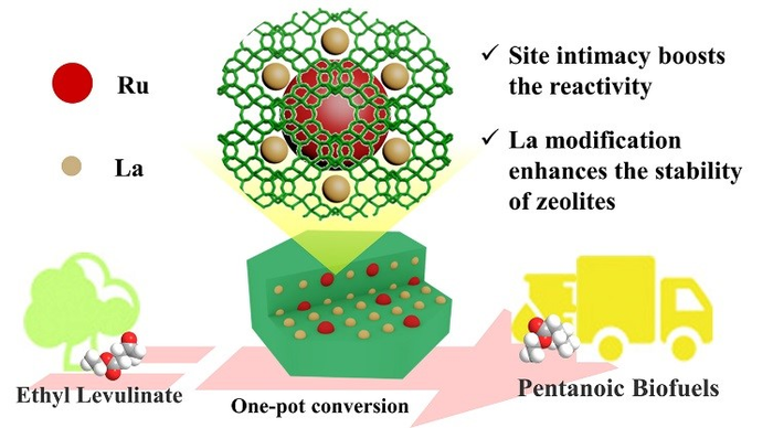 Zeolite-tailored active site proximity for the efficient production of pentanoic biofuels