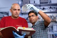 Dr. Satchidananda Panda and Dr. Luciano DiTacchio, Salk Institute