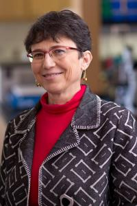 Grace Aldrovandi, UCLA