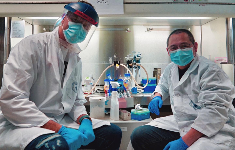 Toronto researchers develop rapid, sensitive and cheap way to count coronavirus antibodies