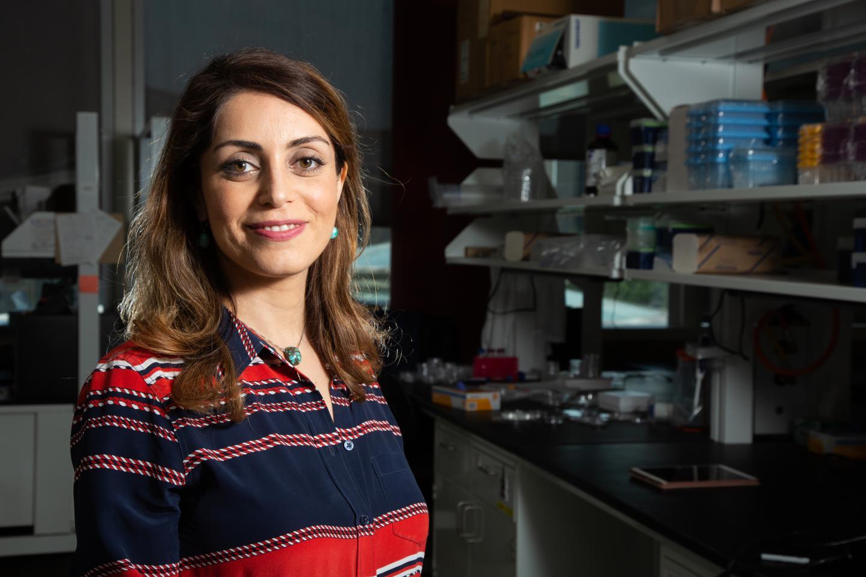 University of Houston biomedical researcher Sheeren Majd