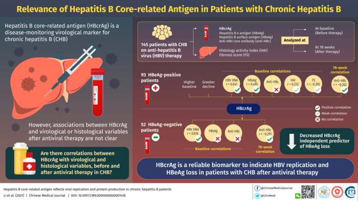 Relevance of Hepatitis B Core-Related Antigen in Chronic Hepatitis B Patients