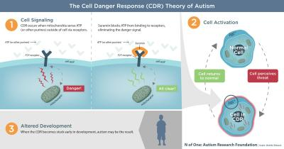 The Cell Danger Response Theory of Autism