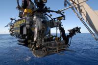 Johnson Sea Link Submarine Collecting Deep-water Marine Sponges
