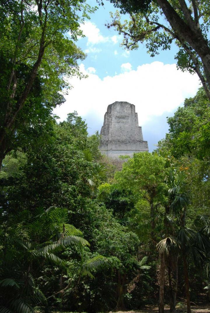 Tikal (2 of 3)