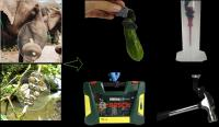 Nature-inspired new soft fabric robotic gripper