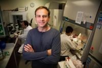 Alexey Terskikh, Ph.D., Sanford Burnham Prebys Medical Discovery Institute