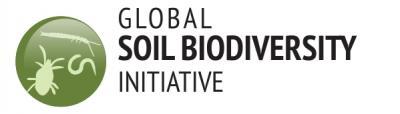 GBSI Logo