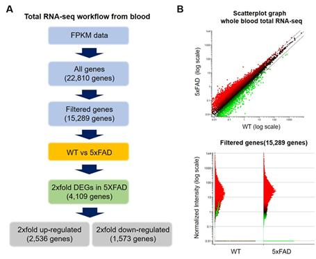 Total RNA-seq Workflow and Gene Expression Change Profile