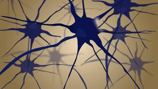 New Biosensor Tracks Single Cell Molecular Changes in the Living Mouse Brain
