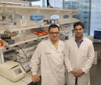 Nikolay Kandul and Omar Akbari, University of California - San Diego