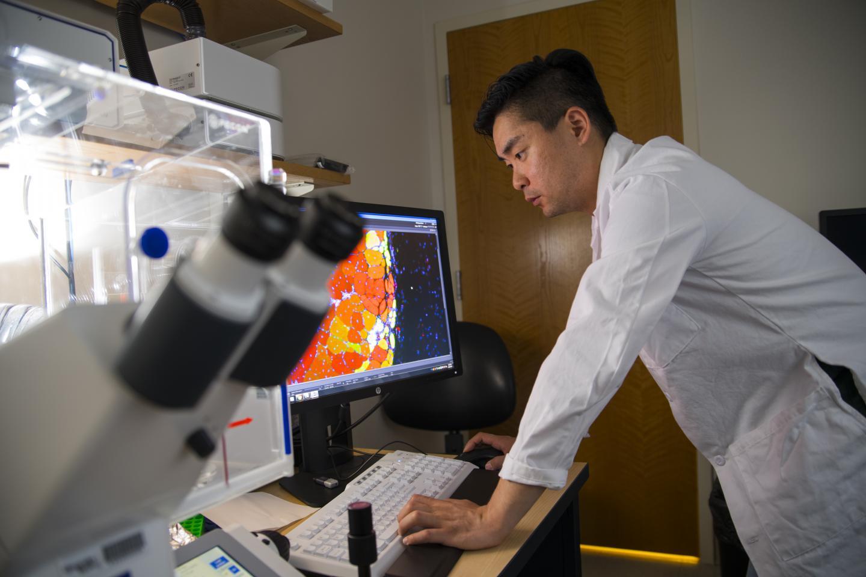 Woojin Han Observes Healing Muscle Tissue