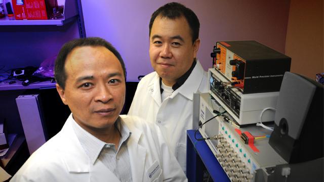 Joe Z. Tsien and Phillip Wang, Medical College of Georgia at Georgia Regents University