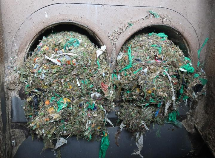 Plastic Residue Being Filtered out of Food Waste